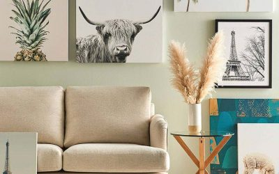 Feng Shui Basics to Bring Life to Your Home